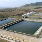 Depuración de Aguas Residuales. Granja Escuela Haritz Berri