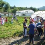 Huerta Ética. Granja Escuela Haritz Berri