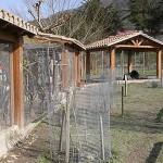 aves01-Granja-Fundacion-Ilundain