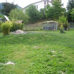 aves02-Granja-Fundacion-Ilundain